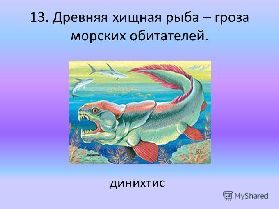 13. Древняя хищная рыба – гроза морских обитателей. динихтис