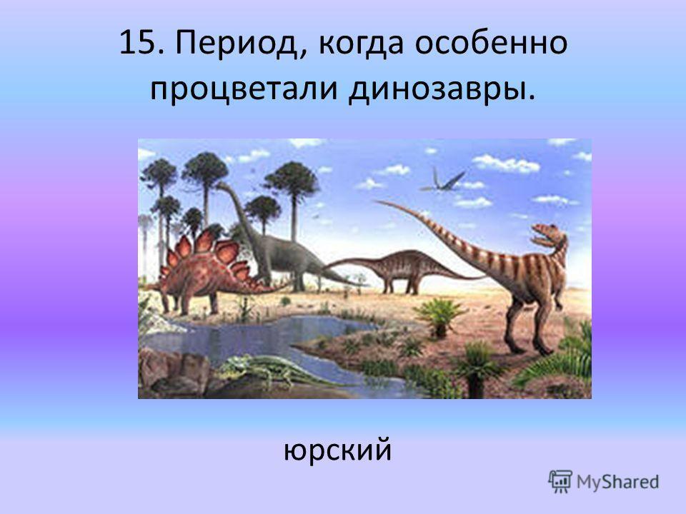 15. Период, когда особенно процветали динозавры. юрский
