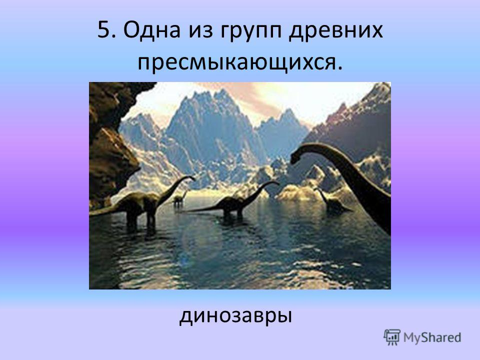5. Одна из групп древних пресмыкающихся. динозавры