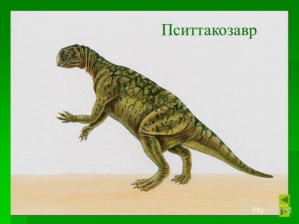 26 Пситтакозавр