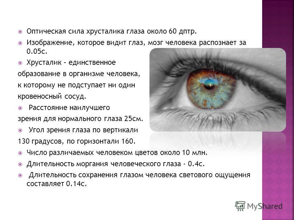 Оптическая сила хрусталика глаза около 60 дптр. Изображение, которое видит глаз, мозг человека распознает за 0.05 с. Хрусталик – единственное образование в организме человека, к которому не подступает ни один кровеносный сосуд. Расстояние наилучшего