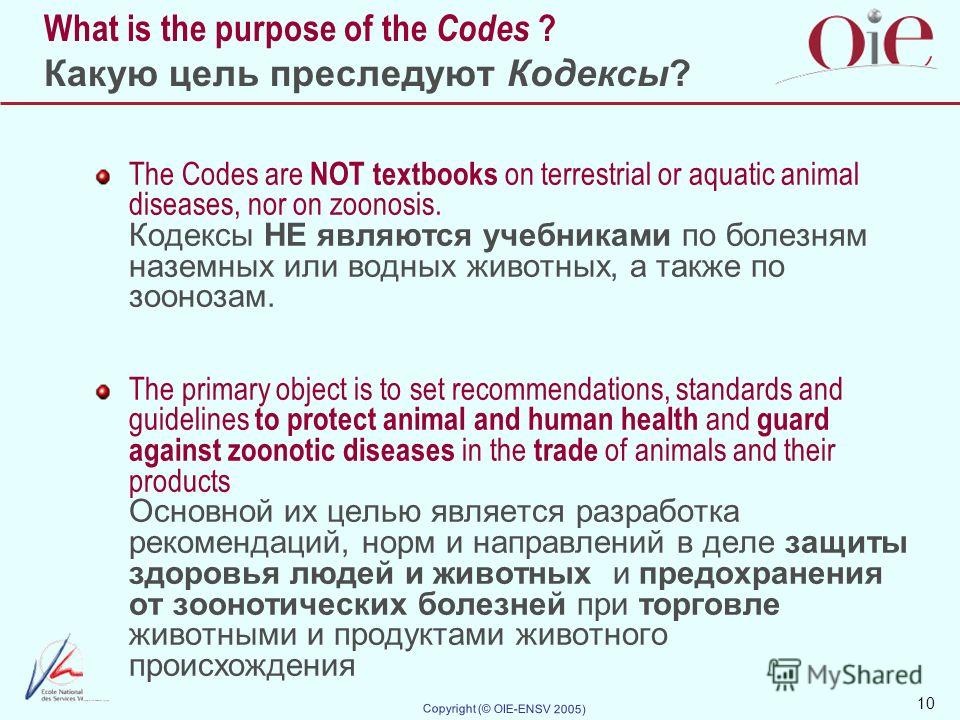 10 Copyright (© OIE-ENSV 2005) What is the purpose of the Codes ? Какую цель преследуют Кодексы? The Codes are NOT textbooks on terrestrial or aquatic animal diseases, nor on zoonosis. Кодексы НЕ являются учебниками по болезням наземных или водных жи