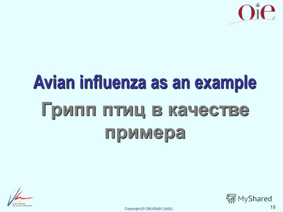 18 Copyright (© OIE-ENSV 2005) Avian influenza as an example Грипп птиц в качестве примера