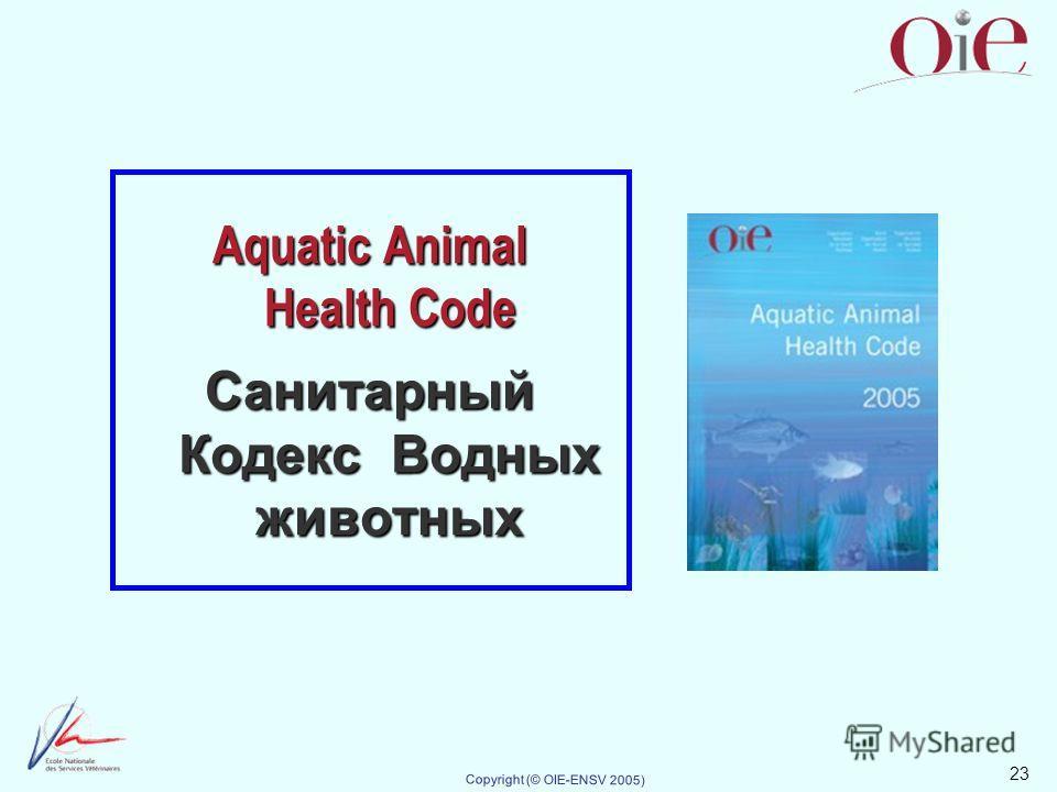 23 Copyright (© OIE-ENSV 2005) Aquatic Animal Health Code Санитарный Кодекс Водных животных