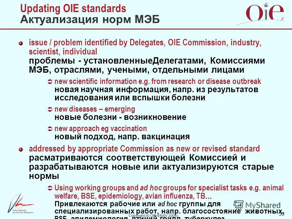 30 Copyright (© OIE-ENSV 2005) Updating OIE standards Актуализация норм МЭБ issue / problem identified by Delegates, OIE Commission, industry, scientist, individual проблемы - установленные Делегатами, Комиссиями МЭБ, отраслями, учеными, отдельными л