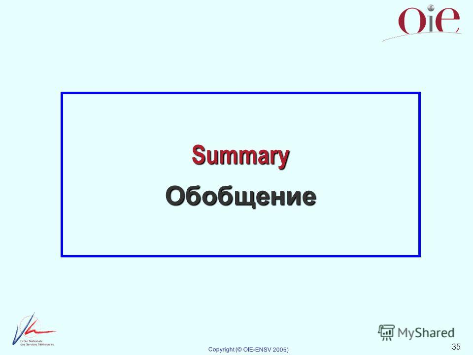 35 Copyright (© OIE-ENSV 2005) Summary Обобщение