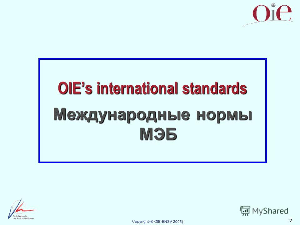 5 Copyright (© OIE-ENSV 2005) OIEs international standards Международные нормы МЭБ