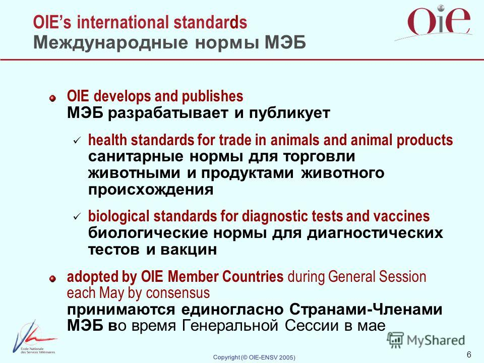 6 Copyright (© OIE-ENSV 2005) OIEs international standards Международные нормы МЭБ OIE develops and publishes МЭБ разрабатывает и публикует health standards for trade in animals and animal products санитарные нормы для торговли животными и продуктами