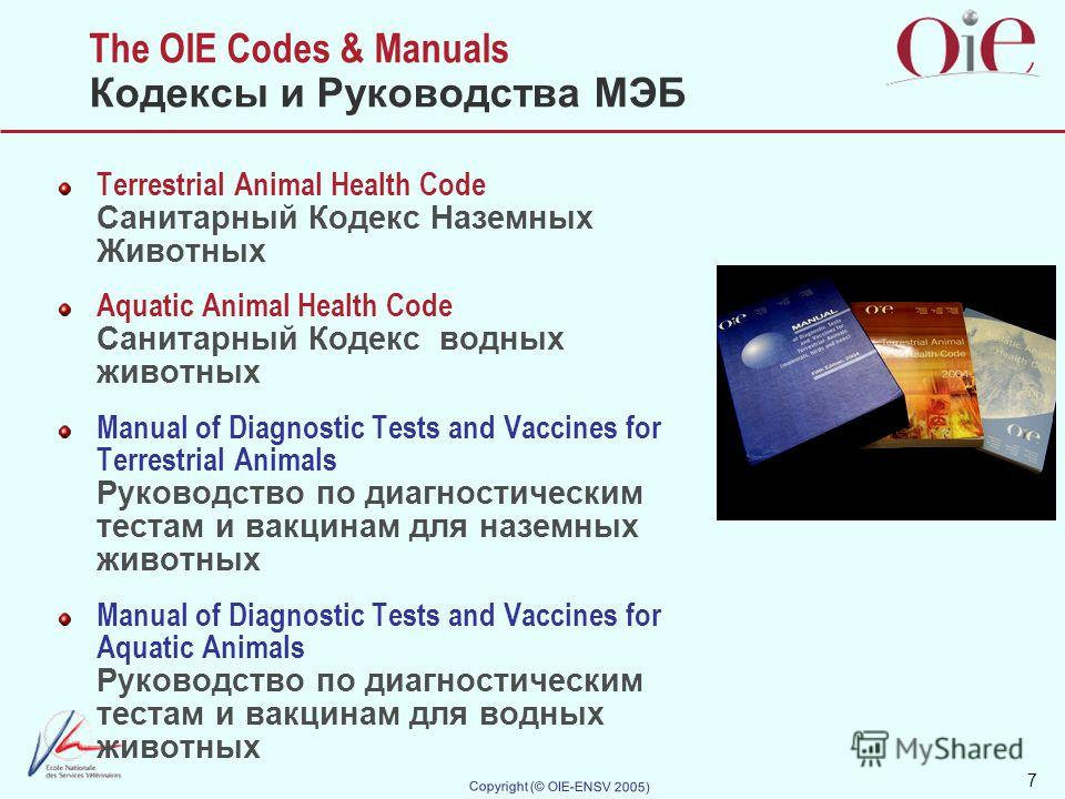7 Copyright (© OIE-ENSV 2005) The OIE Codes & Manuals Кодексы и Руководства МЭБ Terrestrial Animal Health Code Санитарный Кодекс Наземных Животных Aquatic Animal Health Code Санитарный Кодекс водных животных Manual of Diagnostic Tests and Vaccines fo