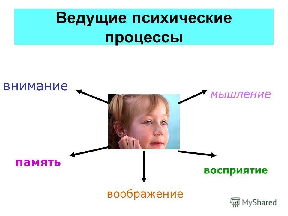 Ведущие психические процессы внимание мышление память восприятие воображение