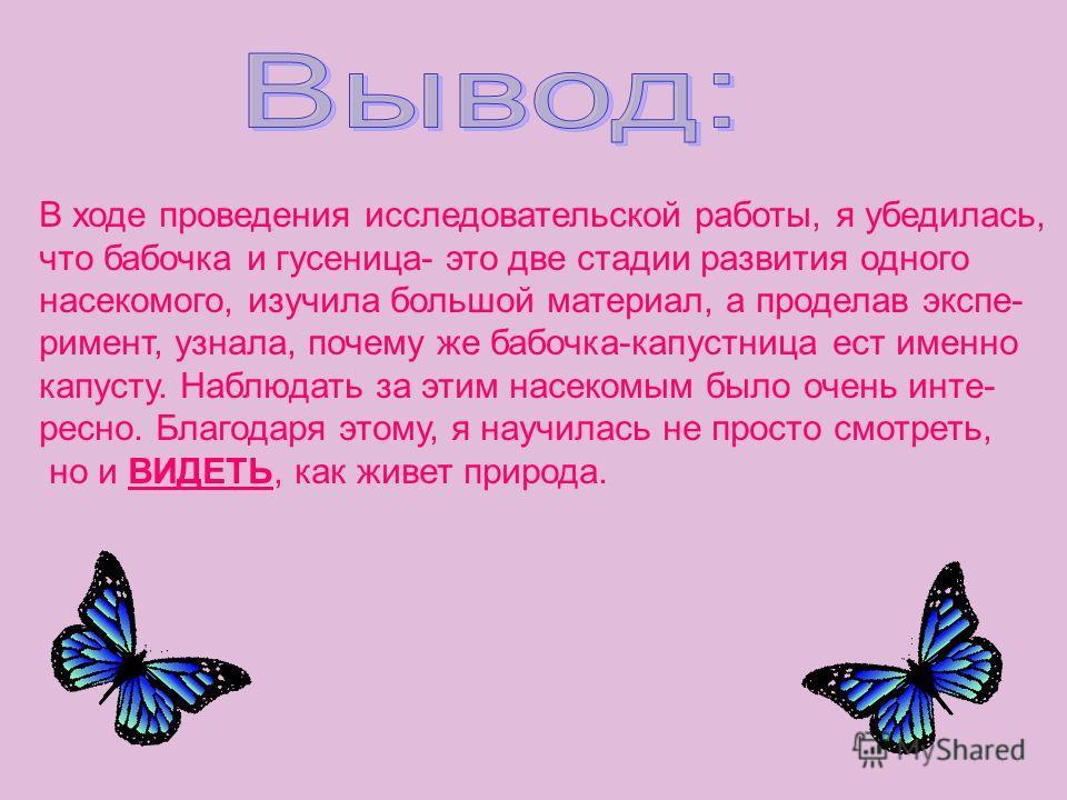 В ходе проведения исследовательской работы, я убедилась, что бабочка и гусеница- это две стадии развития одного насекомого, изучила большой материал, а проделав экспе- римент, узнала, почему же бабочка-капустница ест именно капусту. Наблюдать за этим