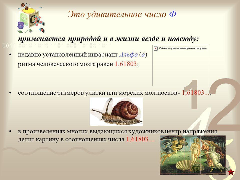 Это удивительное число Ф применяется природой и в жизни везде и повсюду: недавно установленный инвариант Альфа (а) ритма человеческого мозга равен 1,61803; соотношение размеров улитки или морских моллюсков - 1,61803...; в произведениях многих выдающи