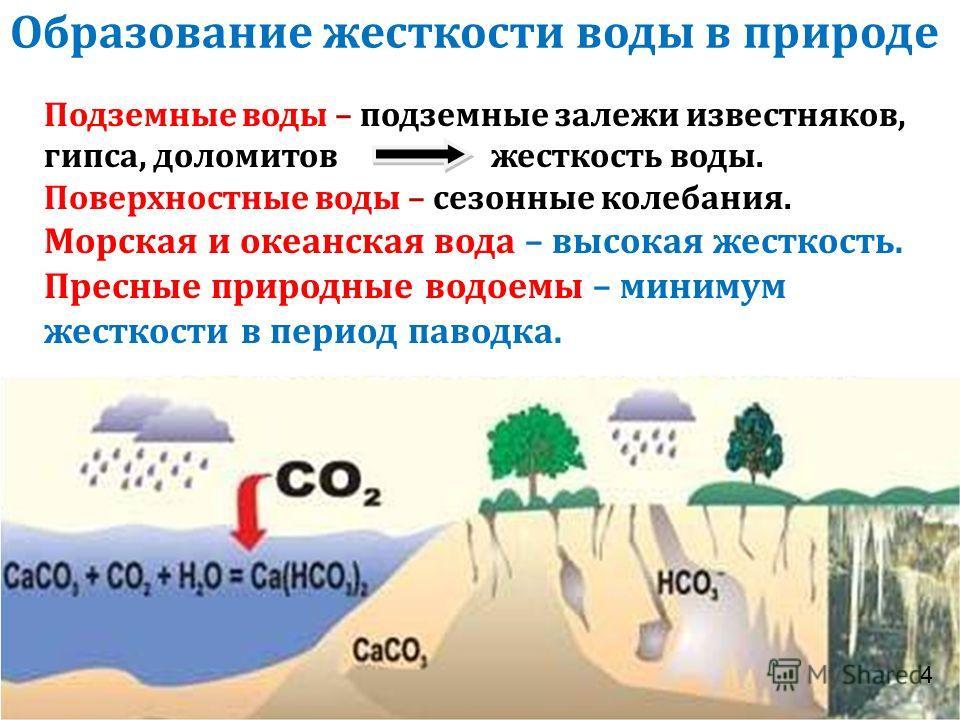Образование жесткости воды в природе Подземные воды – подземные залежи известняков, гипса, доломитов жесткость воды. Поверхностные воды – сезонные колебания. Морская и океанская вода – высокая жесткость. Пресные природные водоемы – минимум жесткости