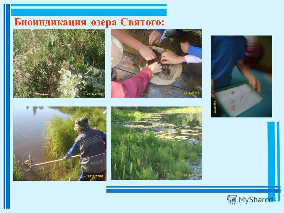 15 Биоиндикация озера Святого: