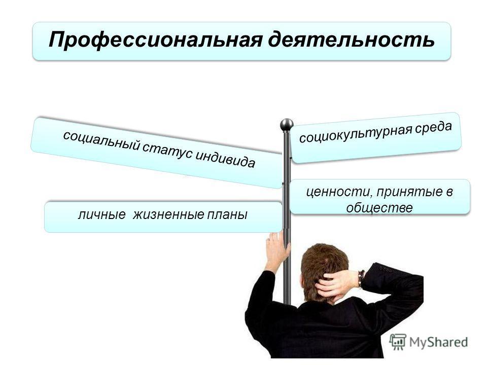 Профессиональная деятельность социокультурная среда социальный статус индивида ценности, принятые в обществе личные жизненные планы