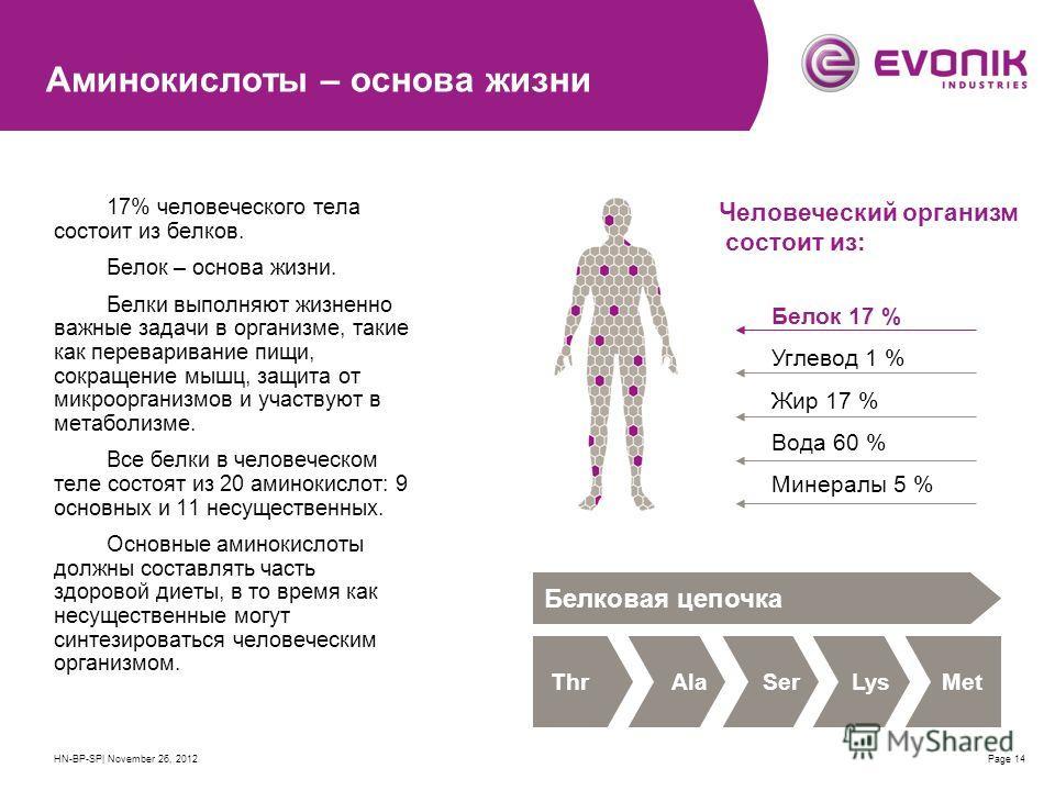 HN-BP-SP| November 26, 2012Page 14 Аминокислоты – основа жизни 17% человеческого тела состоит из белков. Белок – основа жизни. Белки выполняют жизненно важные задачи в организме, такие как переваривание пищи, сокращение мышц, защита от микроорганизмо