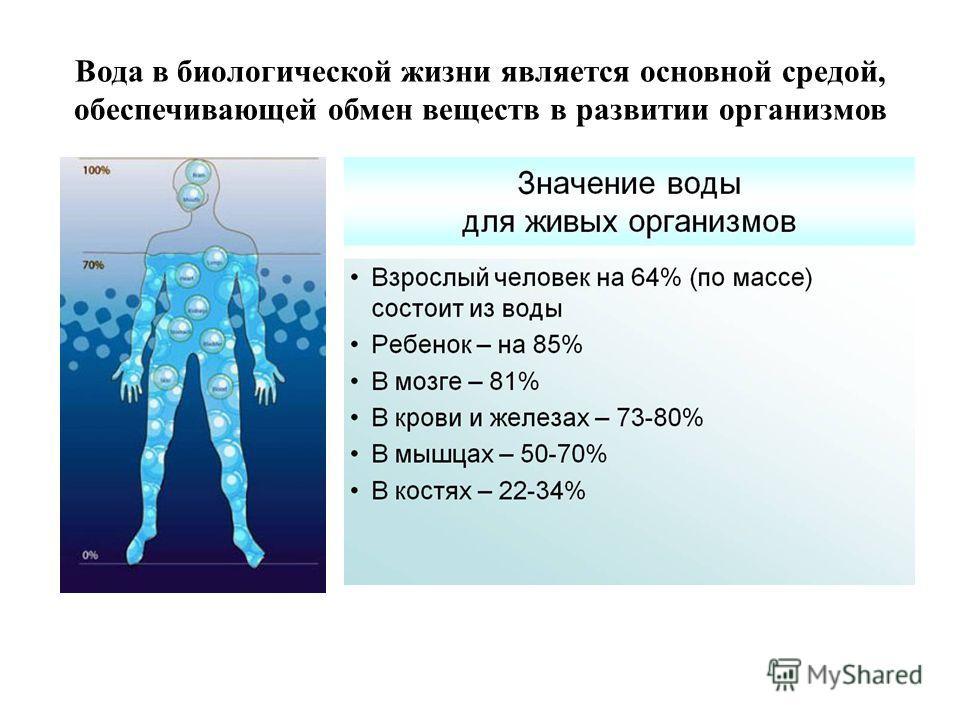 Вода в биологической жизни является основной средой, обеспечивающей обмен веществ в развитии организмов