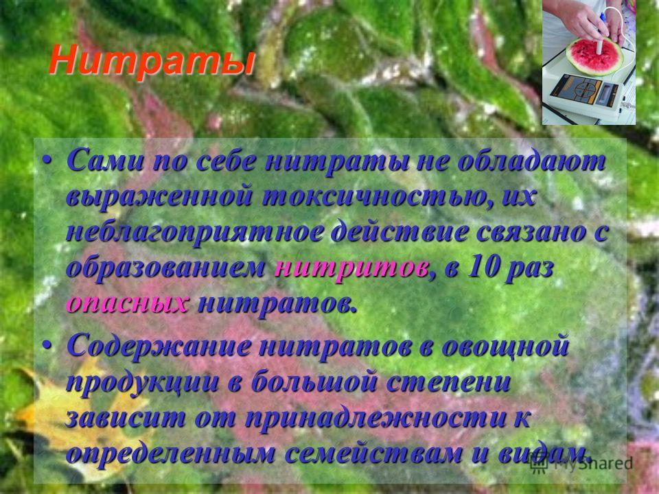 Нитраты Сами Сами по себе нитраты не обладают выраженной токсичностью, их неблагоприятное действие связано с образованием нитритов, нитритов, в 10 раз опасных нитратов. Содержание Содержание нитратов в овощной продукции в большой степени зависит от п