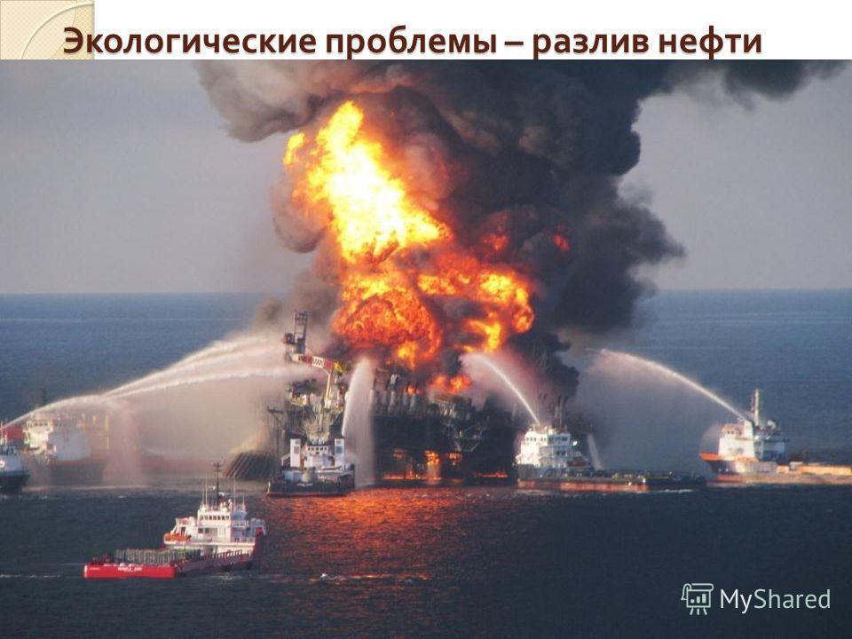 Экологические проблемы – разлив нефти