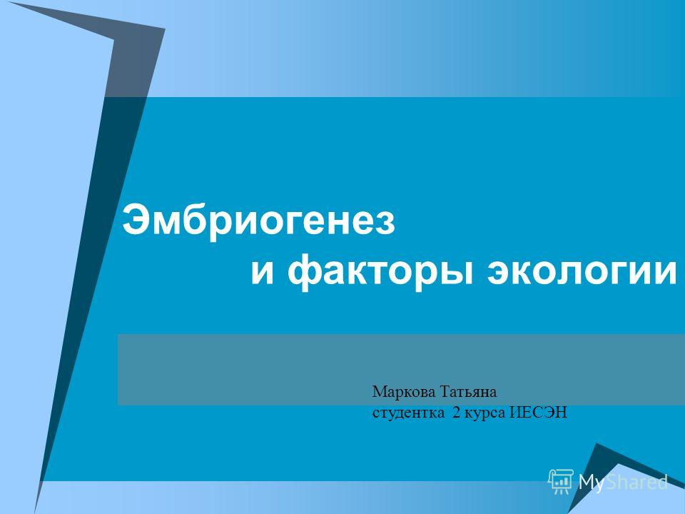 Эмбриогенез и факторы экологии Маркова Татьяна студентка 2 курса ИЕСЭН