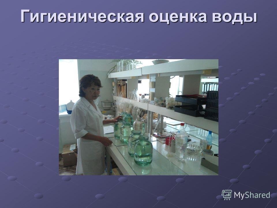 Гигиеническая оценка воды