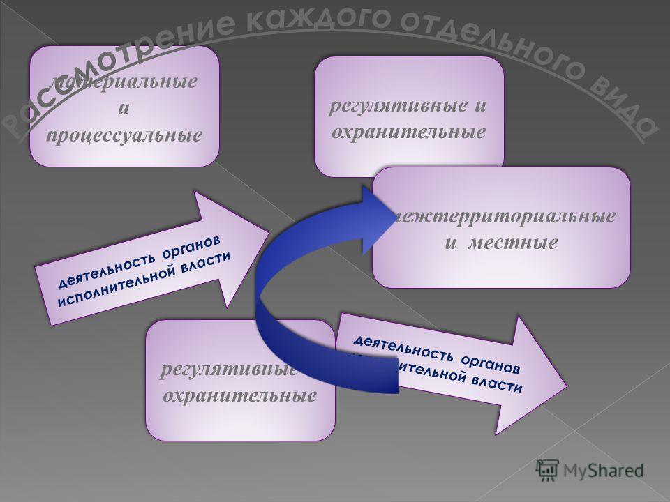 материальные и процессуальные деятельность органов исполнительной власти регулятивные и охранительные межтерриториальные и местные деятельность органов исполнительной власти