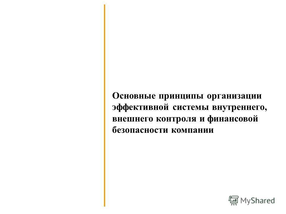 Основные принципы организации эффективной системы внутреннего, внешнего контроля и финансовой безопасности компании