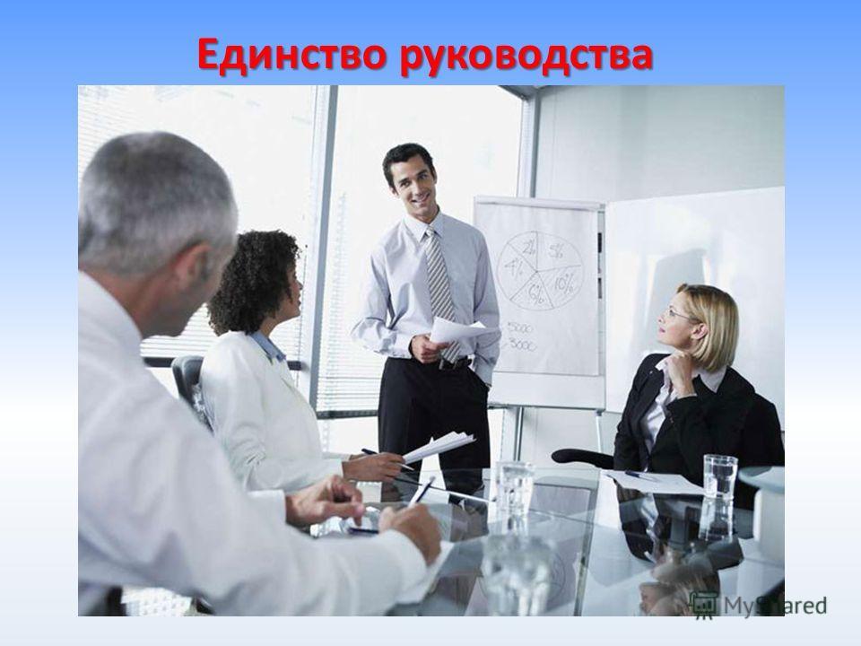 Единство руководства