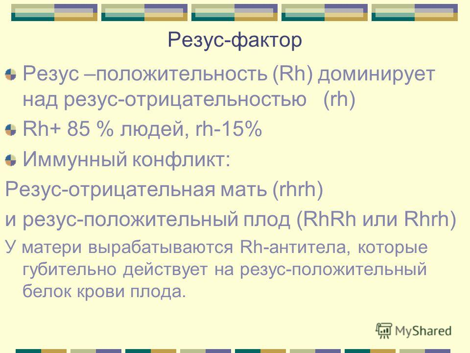 Резус-фактор Резус –положительность (Rh) доминирует над резус-отрицательностью (rh) Rh+ 85 % людей, rh-15% Иммунный конфликт: Резус-отрицательная мать (rhrh) и резус-положительный плод (RhRh или Rhrh) У матери вырабатываются Rh-антитела, которые губи