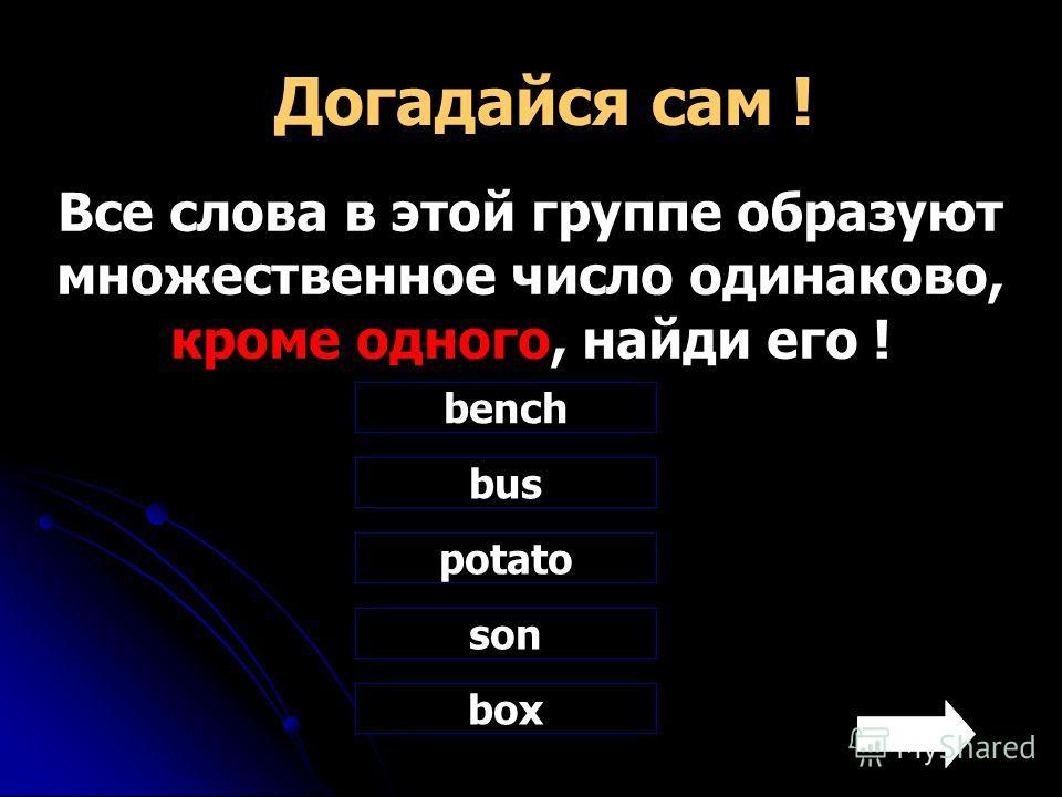 Догадайся сам ! Все слова в этой группе образуют множественное число одинаково, кроме одного, найди его ! bench bus potato son box