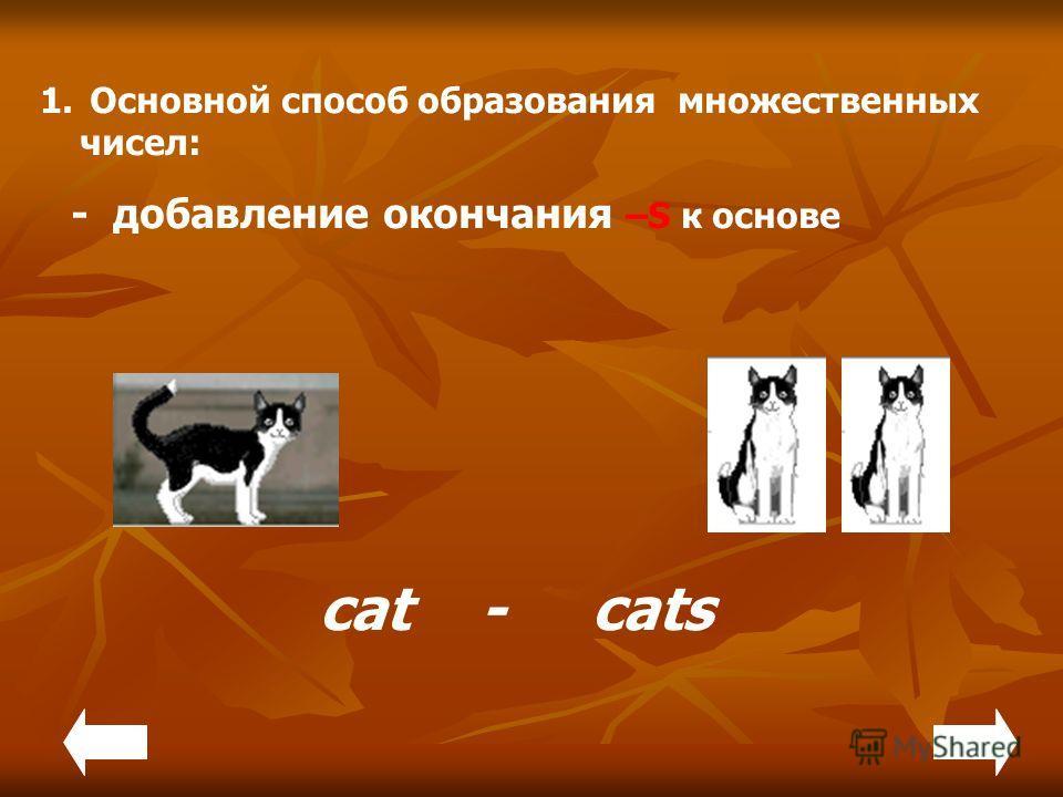 1. Основной способ образования множественных чисел: - добавление окончания –S к основе cat - cats