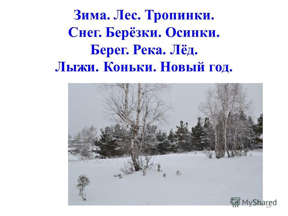 Пенал - Сорока - Сосна - Стул - 28