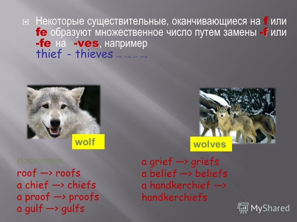 fef fe-ves Некоторые существительные, оканчивающиеся на f или fe образуют множественное число путем замены -f или -fe на -ves, например thief - thieves, knife - knives, wolf - wolves wolf wolves Исключения: roof > roofs a chief > chiefs a proof > pro