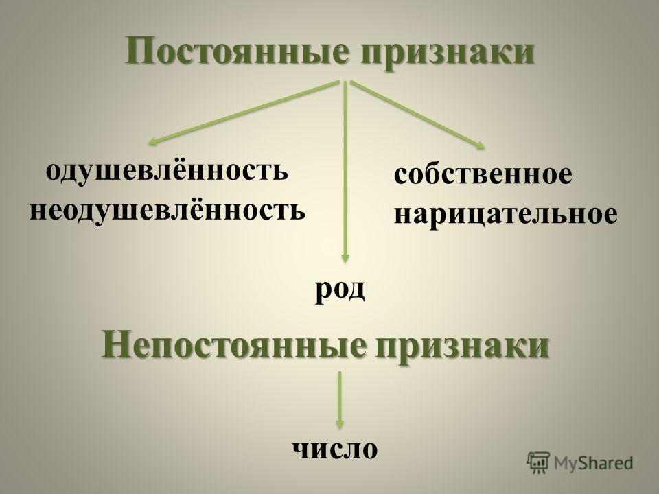 План.План. 1. Роль имён существительных в речи. 2. Постоянные и непостоянные признаки имён существительных. 3. Член предложения. 4. Морфологический разбор имён существительных.