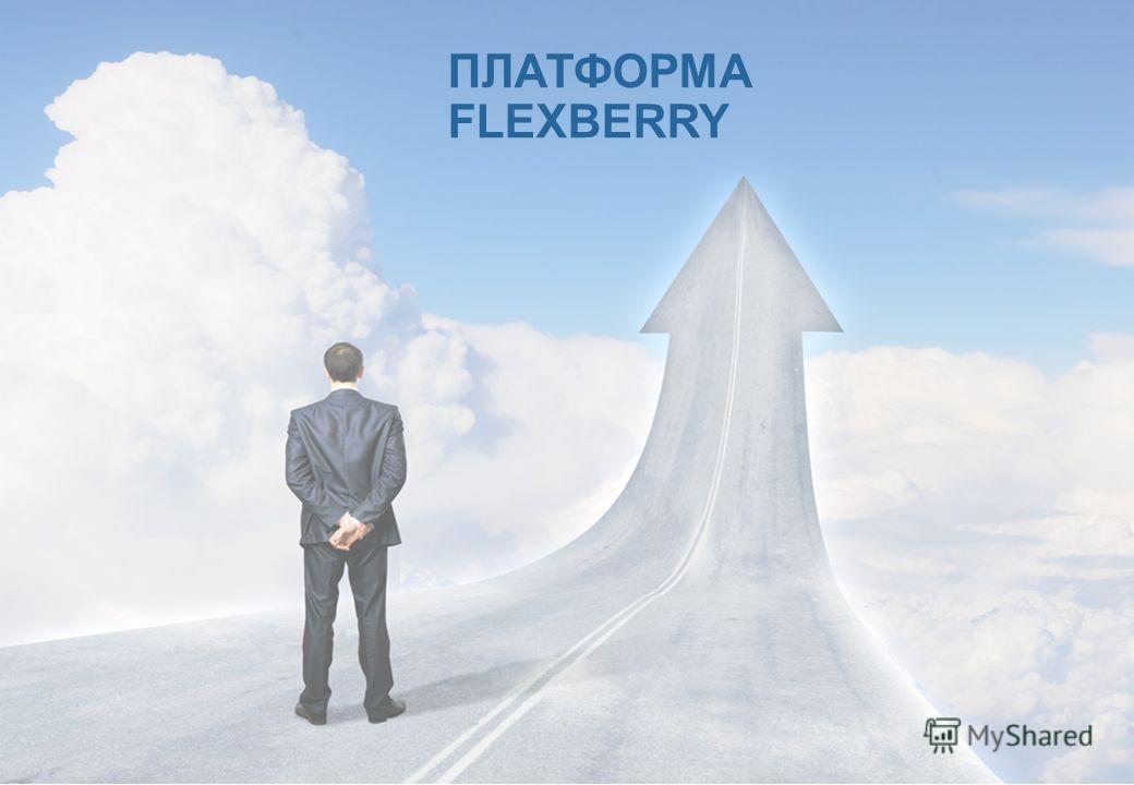 ПЛАТФОРМА FLEXBERRY