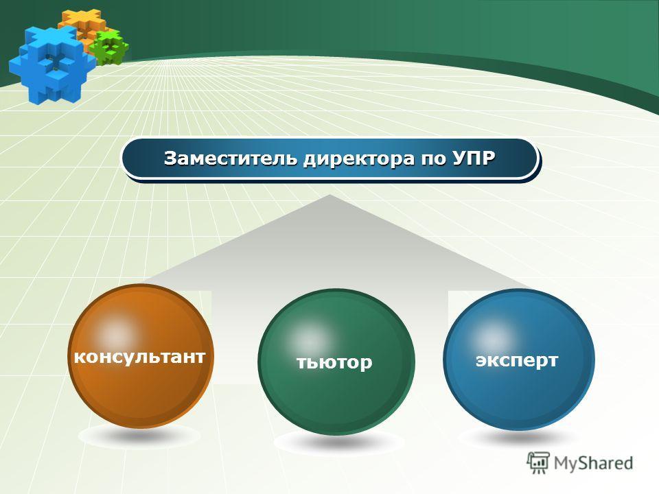 Заместитель директора по УПР эксперт тьютор консультант