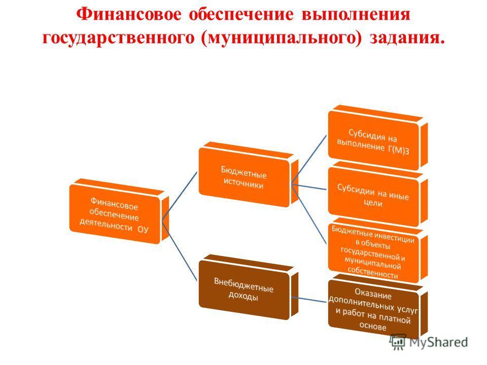Финансовое обеспечение выполнения государственного (муниципального) задания.