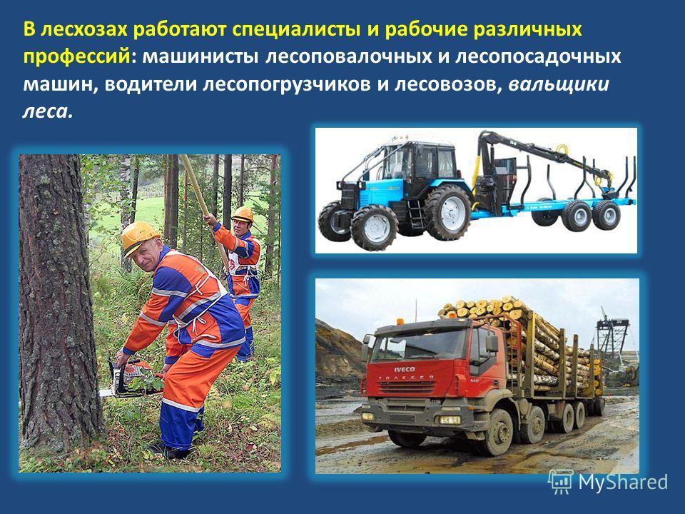 В лесхозах работают специалисты и рабочие различных профессий: машинисты лесоповалочных и лесопосадочных машин, водители лесопогрузчиков и лесовозов, вальщики леса.