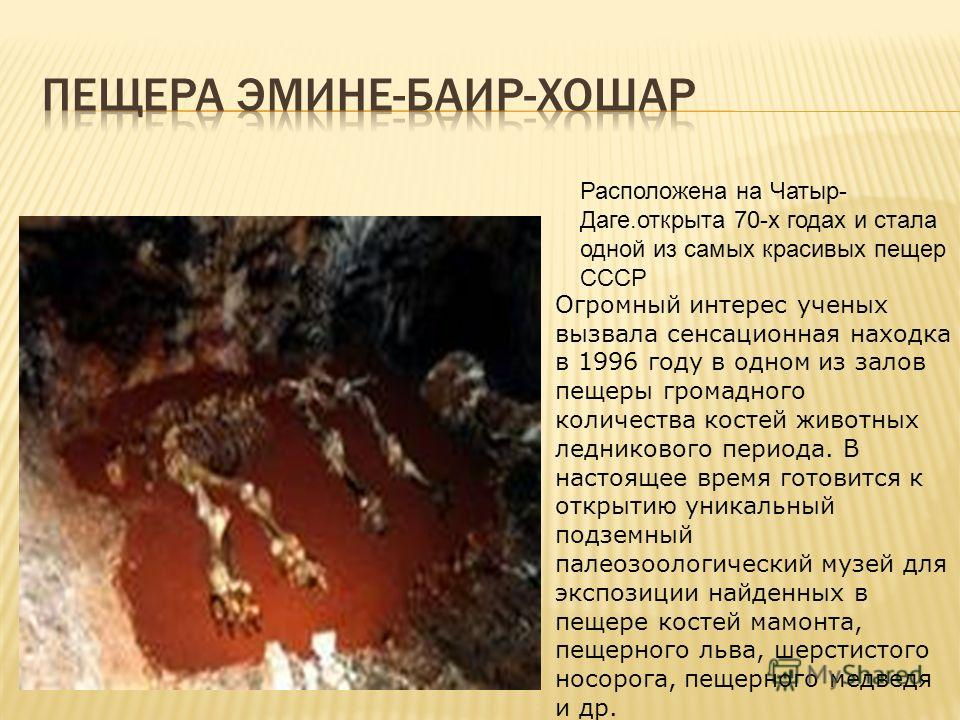 Огромный интерес ученых вызвала сенсационная находка в 1996 году в одном из залов пещеры громадного количества костей животных ледникового периода. В настоящее время готовится к открытию уникальный подземный палеозоологический музей для экспозиции на