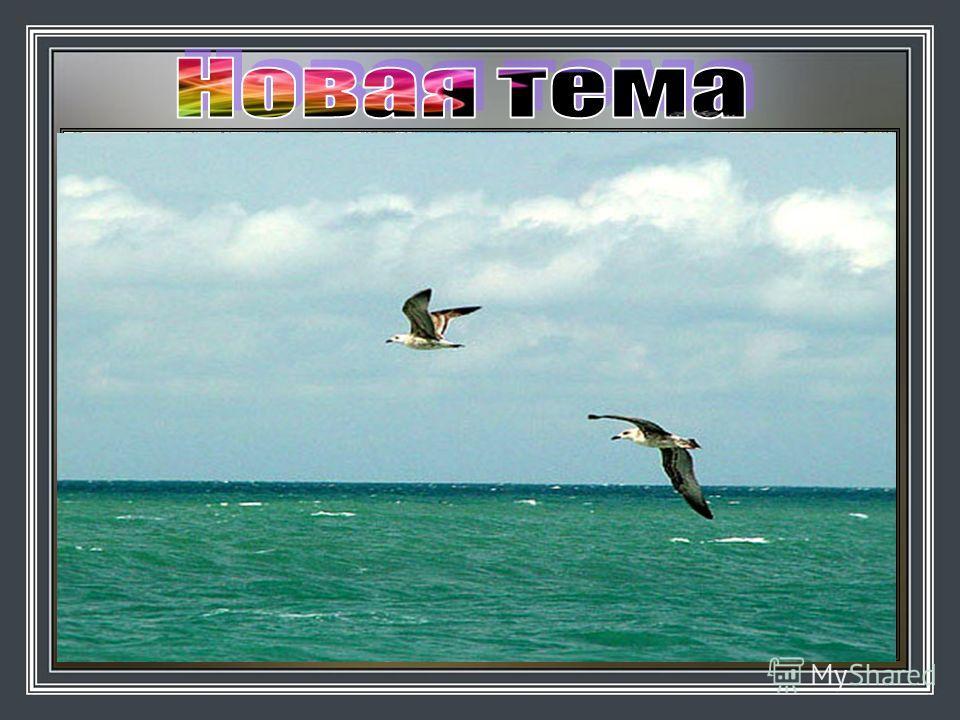 Индийский Чёрное Енисей Байкал океан море