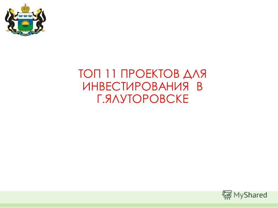 ТОП 11 ПРОЕКТОВ ДЛЯ ИНВЕСТИРОВАНИЯ В Г.ЯЛУТОРОВСКЕ