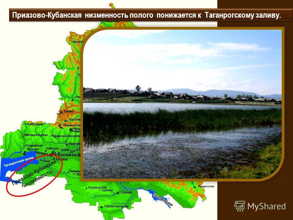 Приазово-Кубанская низменность Приазово-Кубанская низменность полого понижается к Таганрогскому заливу.