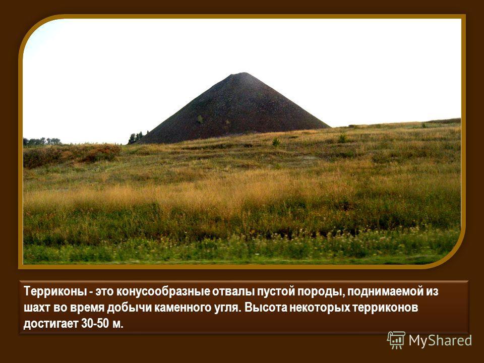 Терриконы - это конусообразные отвалы пустой породы, поднимаемой из шахт во время добычи каменного угля. Высота некоторых терриконов достигает 30-50 м.