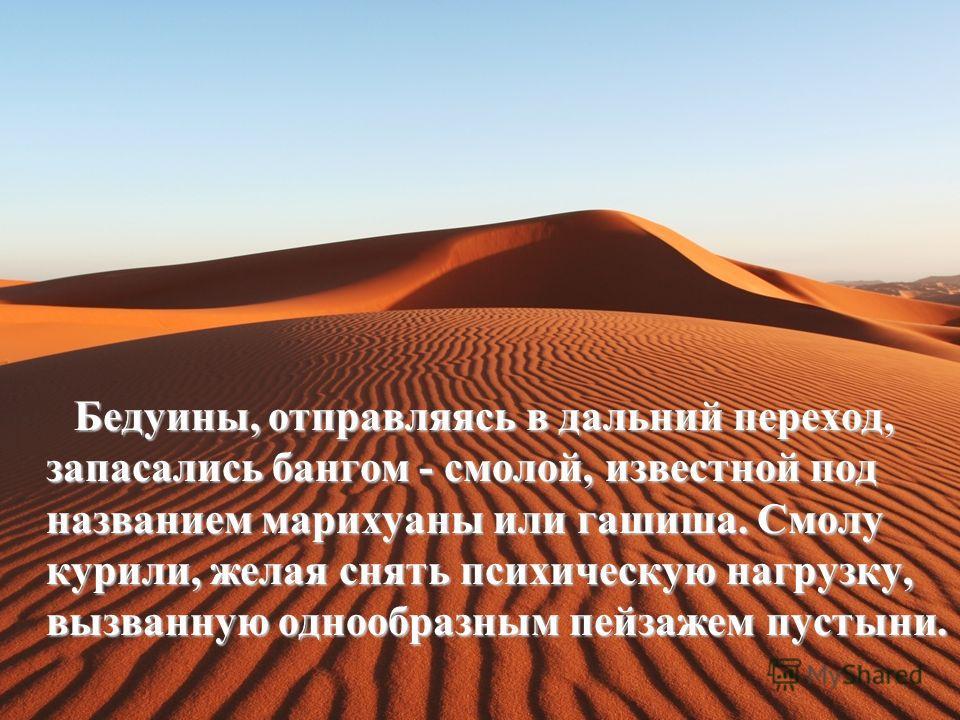 Бедуины, отправляясь в дальний переход, запасались бангом - смолой, известной под названием марихуаны или гашиша. Смолу курили, желая снять психическую нагрузку, вызванную однообразным пейзажем пустыни. Бедуины, отправляясь в дальний переход, запасал