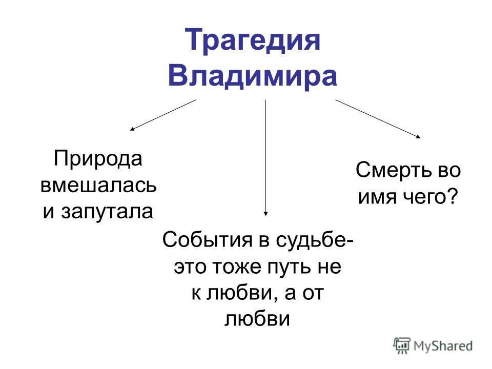 Трагедия Владимира Природа вмешалась и запутала События в судьбе- это тоже путь не к любви, а от любви Смерть во имя чего?