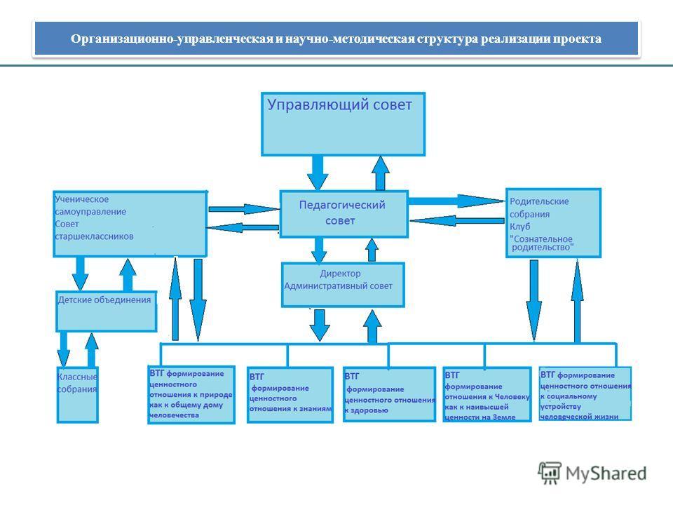 Организационно-управленческая и научно-методическая структура реализации проекта