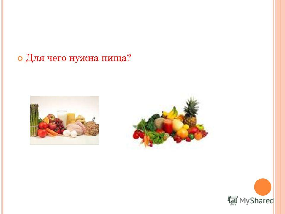 Для чего нужна пища?