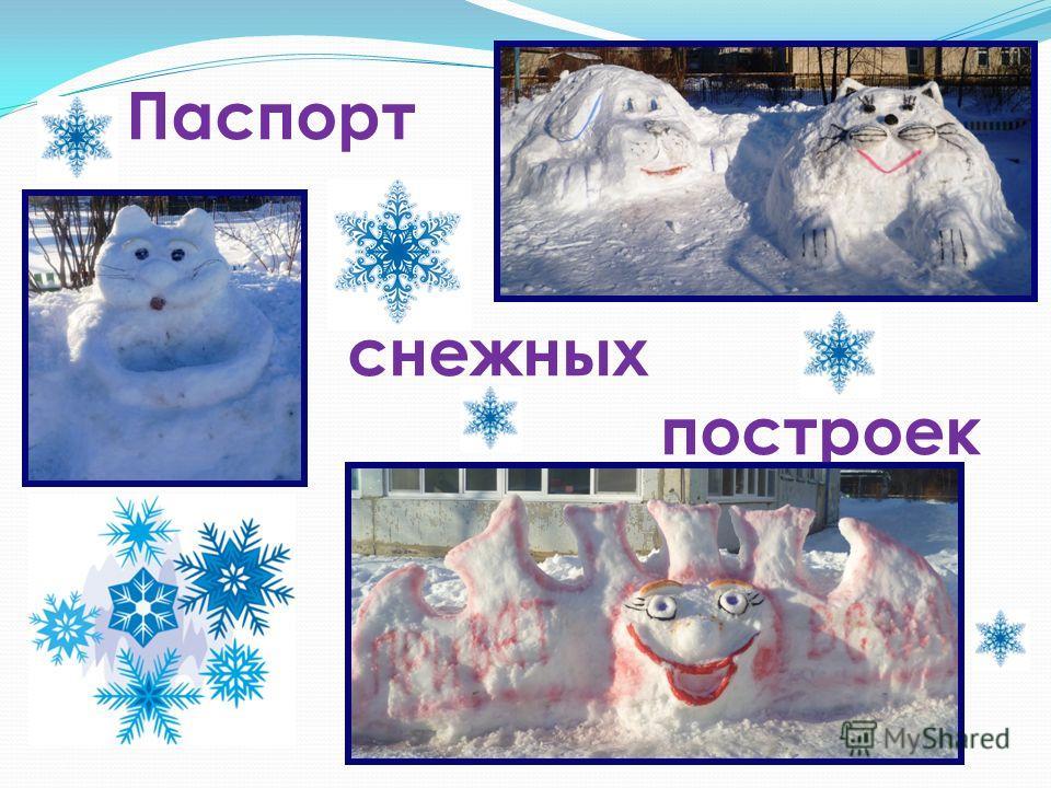 Паспорт снежных построек