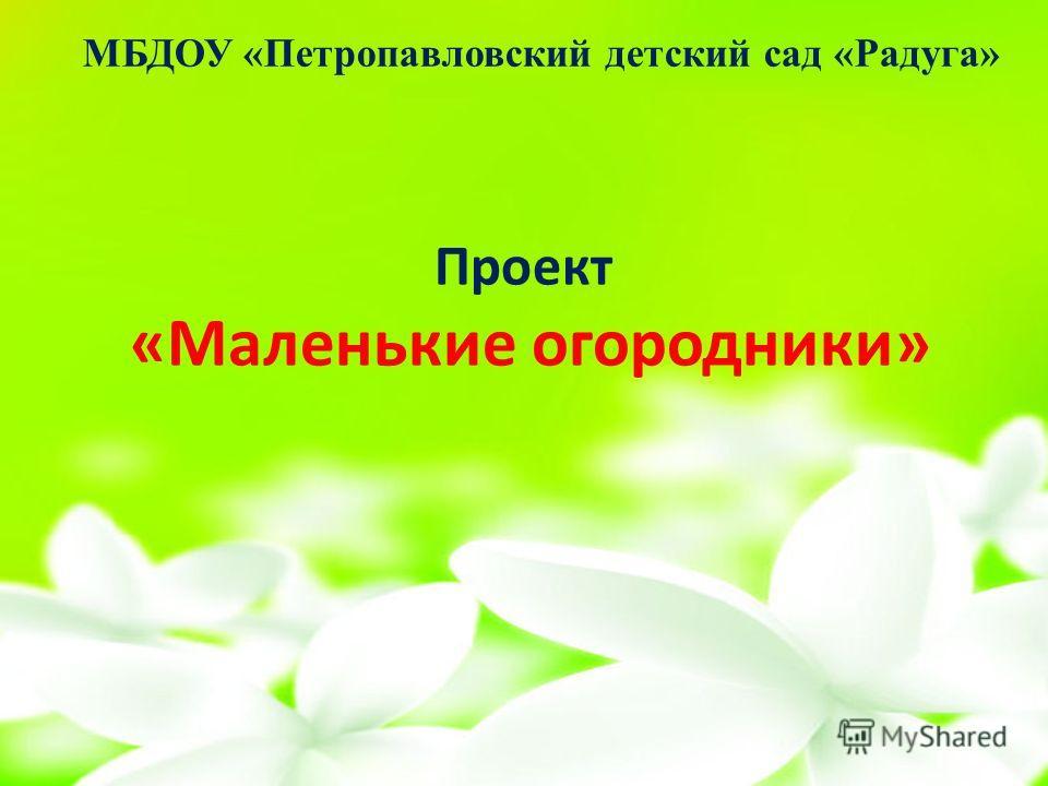 Проект «Маленькие огородники» МБДОУ «Петропавловский детский сад «Радуга»