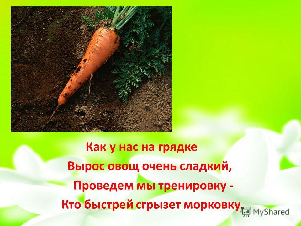 Как у нас на грядке Вырос овощ очень сладкий, Проведем мы тренировку - Кто быстрей сгрызет морковку.